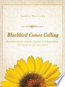 Blackbird Comes Calling