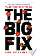 Free Download The Big Fix Book