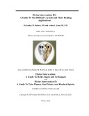 Divine Intervention III  A Guide To The Biblical Crystal and Their Healing Applications