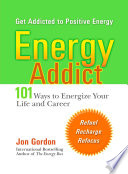 Energy Addict Book