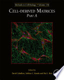 Cell-derived Matrices