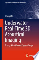 Underwater Real-Time 3D Acoustical Imaging