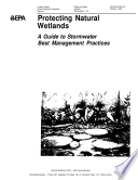 Protecting natural wetlands a guide to stormwater best management practices  Book