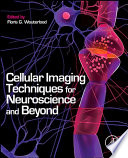 Cellular Imaging Techniques for Neuroscience and Beyond Book