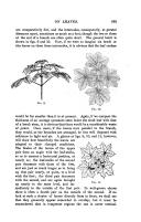 633. oldal