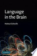Language in the Brain Book PDF