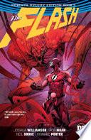 Flash  The Rebirth Deluxe Edition Book 3