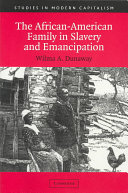 The African American Family in Slavery and Emancipation