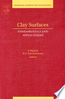 Clay Surfaces Book PDF