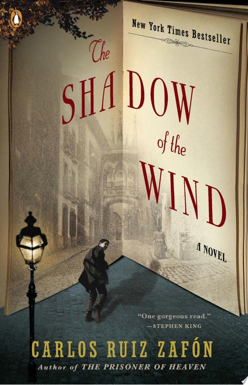 The Shadow of the Wind image
