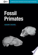 Fossil Primates