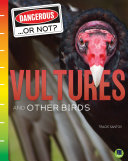 Vultures and Other Birds