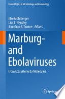Marburg  and Ebolaviruses