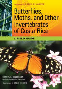 Butterflies, Moths, and Other Invertebrates of Costa Rica Pdf