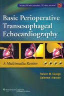 Basic Perioperative Transesophageal Echocardiography