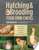 """Hatching & Brooding Your Own Chicks: Chickens, Turkeys, Ducks, Geese, Guinea Fowl"" by Gail Damerow"