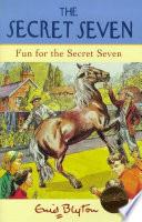 Secret Seven  Fun For The Secret Seven Book