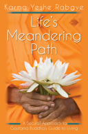 Life s Meandering Path Book PDF