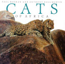 CATS AFRICA