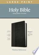 KJV Large Print Thinline Reference Bible, Filament Enabled Edition (Red Letter, Leatherlike, Black/Onyx)
