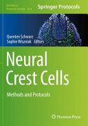 Neural Crest Cells