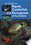 Guide to Squid  Cuttlefish and Octopuses of Australasia