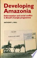 Developing Amazonia