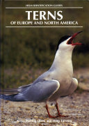 Terns of Europe and North America