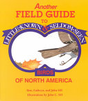 Another Field Guide to Little known   Seldom seen Birds of North America