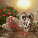 L amore non ha confini