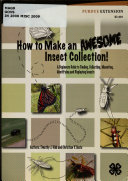 How to Make an Awesome Insect Collection!