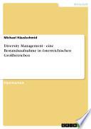 Diversity Management - eine Bestandsaufnahme in österreichischen Großbetrieben