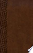 Kjv Everyday Study Bible British Tan Leathertouch