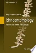 Ichnoentomology