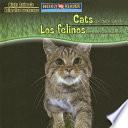 Cats Are Night Animals / Los felinos son animales nocturnos