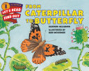 From Caterpillar to Butterfly Pdf/ePub eBook
