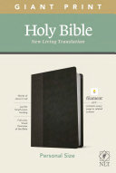 NLT Personal Size Giant Print Bible  Filament Enabled Edition  Red Letter  Leatherlike  Black Onyx