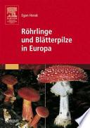 Röhrlinge und Blätterpilze in Europa