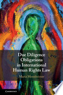 Due Diligence Obligations in International Human Rights Law