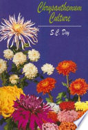 Chrysanthemum Culture