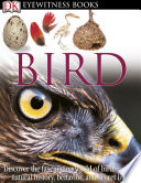 Dk Eyewitness Books Bird