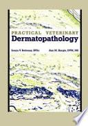 Practical Veterinary Dermatopathology Book PDF