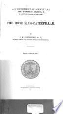 The Rose Slug caterpillar Book
