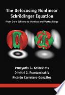 The Defocusing Nonlinear Schr?dinger Equation