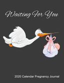 Waiting For You 2020 Calendar Pregnancy Journal Book