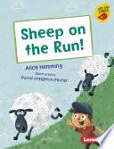 Sheep on the Run