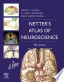 Netter s Atlas of Neuroscience E Book