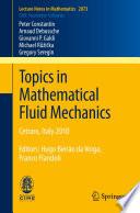 Topics in Mathematical Fluid Mechanics