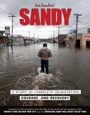 Pdf Sandy