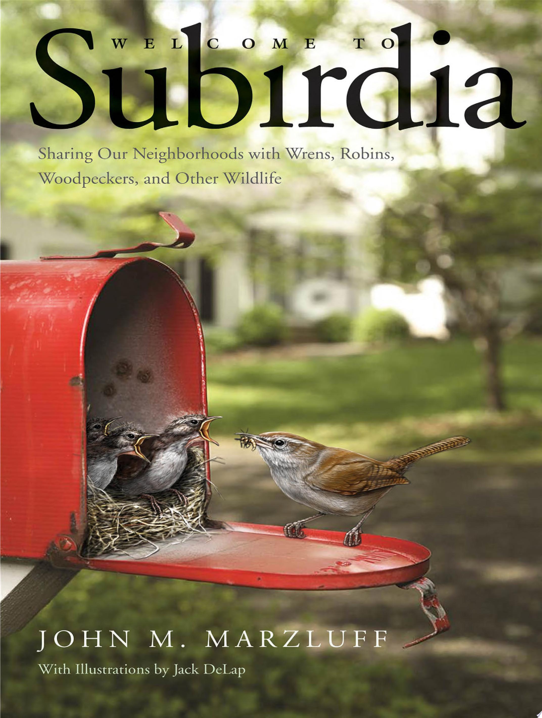 Welcome to Subirdia